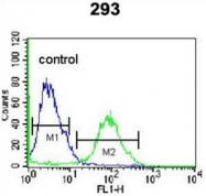 AP53052PU-N - Olfactory receptor 4F15