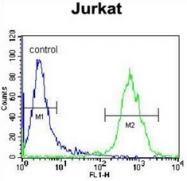 AP53065PU-N - Olfactory receptor 4N4