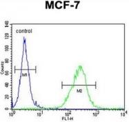 AP53096PU-N - Olfactory receptor 6C4