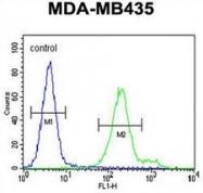 AP53100PU-N - Olfactory receptor 6V1