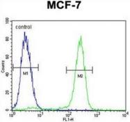 AP53129PU-N - Otopetrin-3