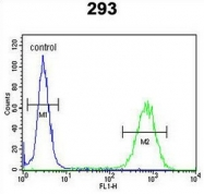 AP53194PU-N - PCDH17