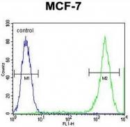 AP53195PU-N - PCDH20