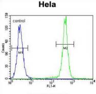 AP53205PU-N - PCDHB10