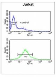 AP53243PU-N - PDK2