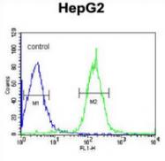 AP53326PU-N - PLA2G6