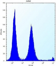 AP53385PU-N - POLR2G
