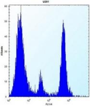 AP53389PU-N - POMT1