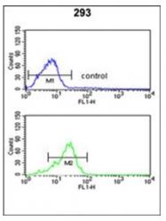 AP53423PU-N - PPP3R2 / CBLP