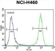AP53441PU-N - PREX1