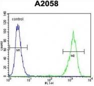 AP53534PU-N - RAB10