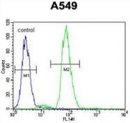 AP53558PU-N - RAD17