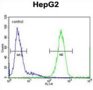 AP53982PU-N - SOHLH1 / TEB2