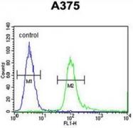 AP54010PU-N - SPDYE3