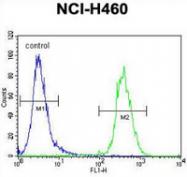 AP54042PU-N - TECRL