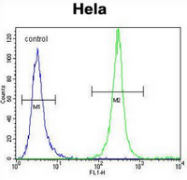 AP54044PU-N - Serglycin / PRG1