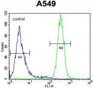 AP54123PU-N - Syncoilin