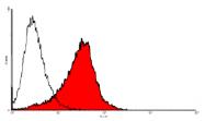 AP60010PU-N - Endomucin