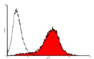 AP60010PU-S - Endomucin