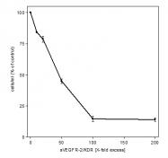 AR26018PU-N - CD309 / VEGFR-2 / Flk-1