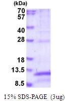 AR51790PU-N - CD9