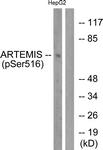 A0456-1 - Artemis