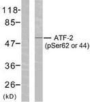 A7013-1 - ATF2