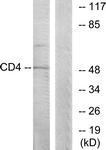 B0846-1 - CD4