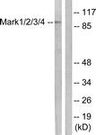 B1093-1 - MARK1