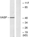 B7249-1 - VASP