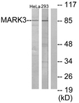 C10490-1 - MARK3