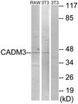 C12110-1 - CADM3