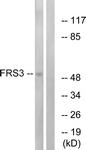 C12384-1 - FRS3