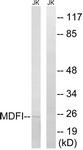 C16756-1 - MDFI