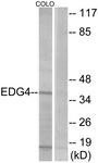 G085-1 - EDG4 / LPAR2