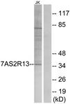 G752-1 - TAS2R13