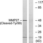 L0334-1 - MMP-27