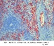 T-3021 - Platelets