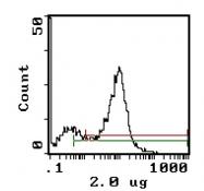 CL010P - CD8