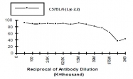 CL010S - CD8
