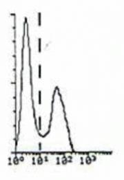 DDX0060P-50 - Beta-2-microglobulin