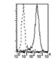 DDX0180A488-50 - CLEC4A