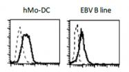 DDX0470A488-50 - CD283 / TLR3