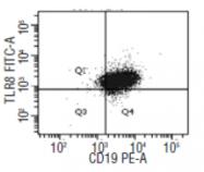 DDX0480A488-50 - CD288 / TLR8