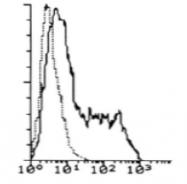 DDX0700A488-50 - CD127 / IL7R