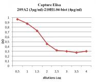 DDX0804P-50 - TSLP