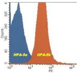DDX9021A488-50 - HPA-5b