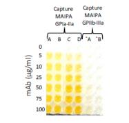 DDX9022P-50 - CD49b / ITGA2