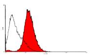 DM3511FT - CD202b / TEK