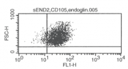DM3612P - CD105 / Endoglin